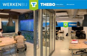 Werken bij Thebo website bouwer